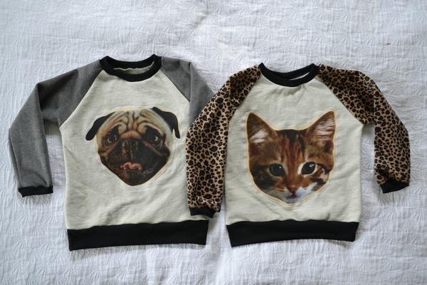 Biglogo_dog_20and_20cat_20sweater