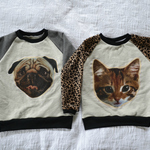 Thumb_dog_20and_20cat_20sweater