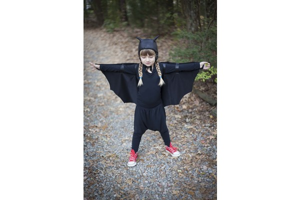 Biglogo_bat_20costume2